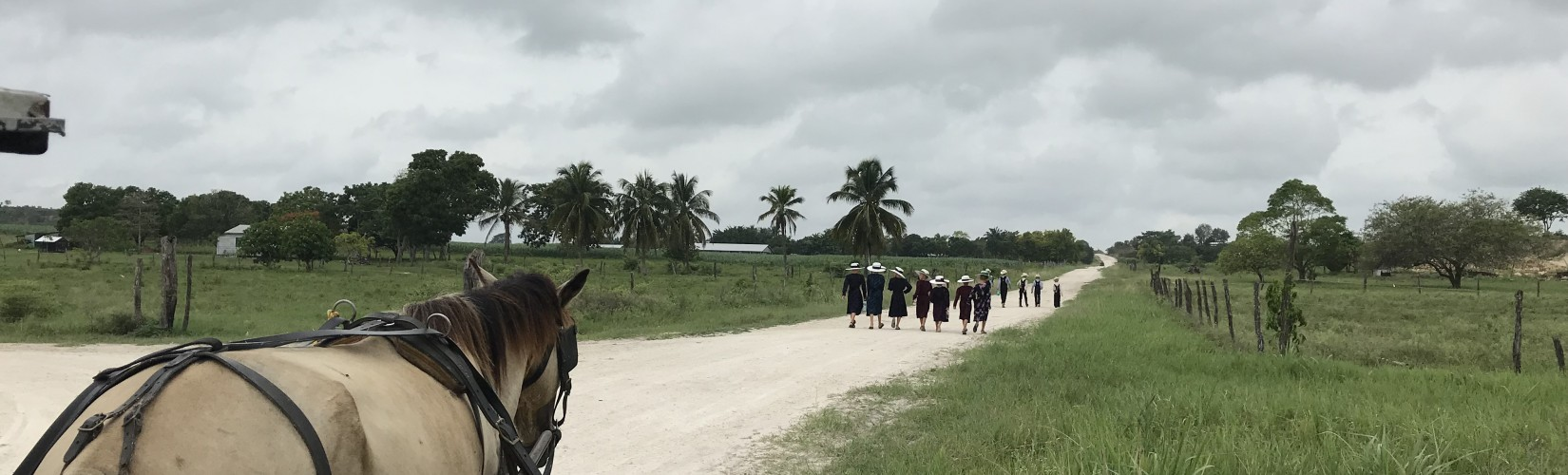 Menonites, Belize