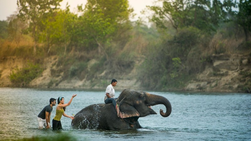 Elephant Bathing, Nepal