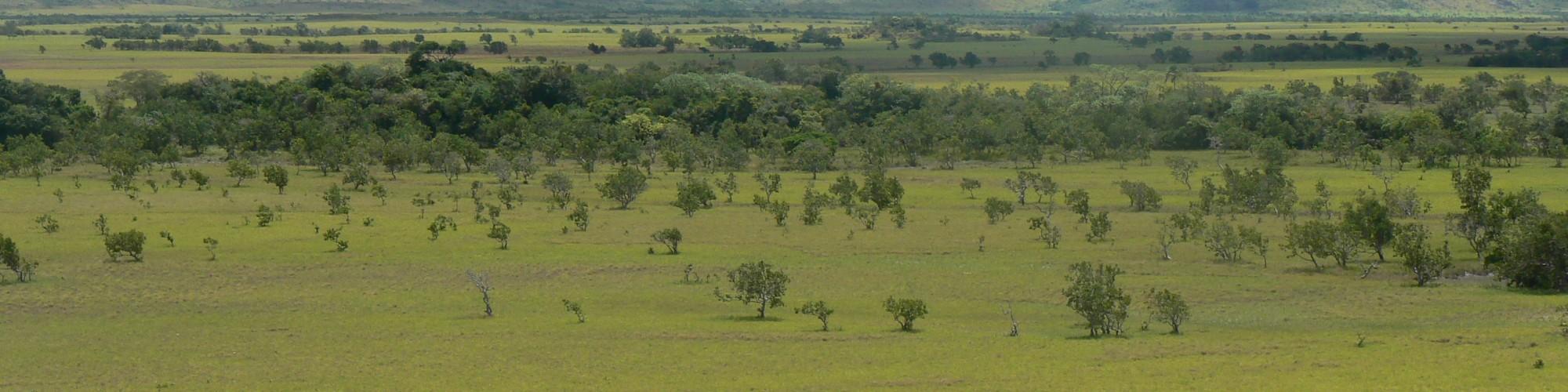 Guyana - Scenery