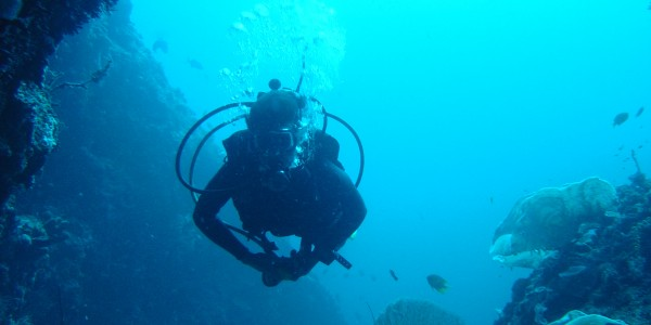 Kenya - Kenya coast - Diving, Snorkelling