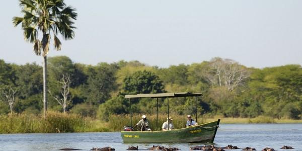 Malawi - Liwonde Boat