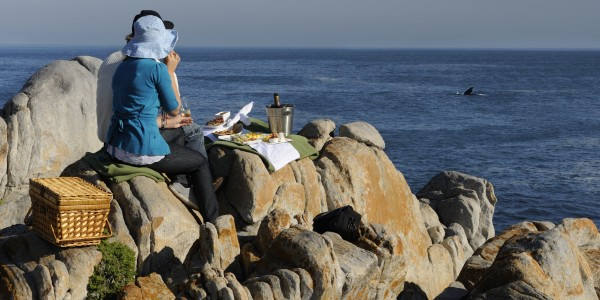 South Africa - Hermanus