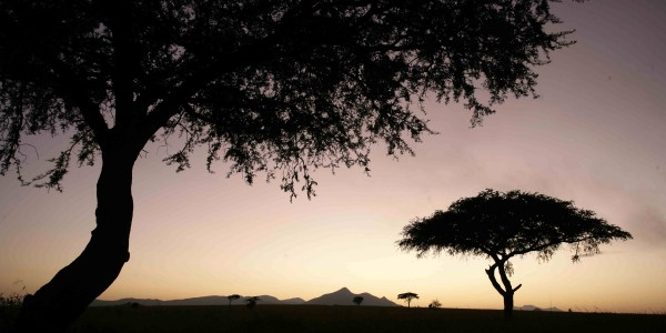 Kidepo Valley National Park (10)