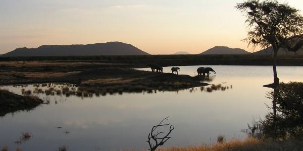 Madikwe