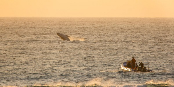 South Africa - Kwazulu Natal - Open Ocean Experience