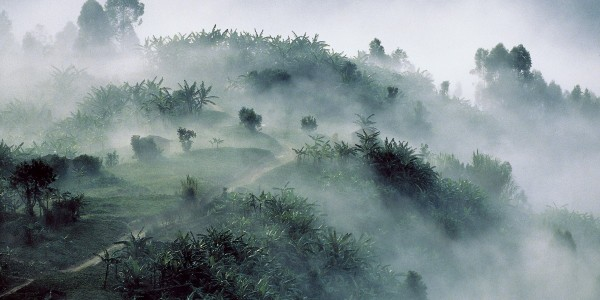 rwanda - VOLC mist 1200x796