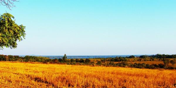 Zambia - Shiwa Ngandu - Fields