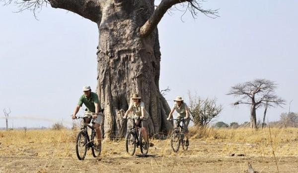 Remote Africa Safaris - biking safari