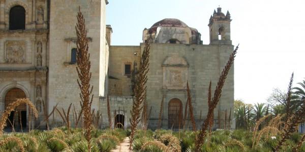 Church with agave oaxaca