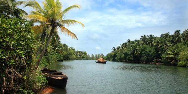 Backwater scenery from Kerala, India.