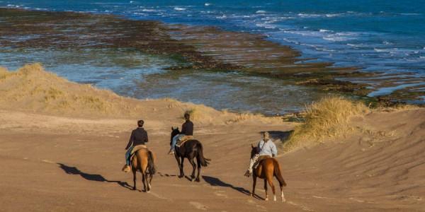 AR - Peninsula Valdes - Estancia Rincon Chico - Horseback Riding