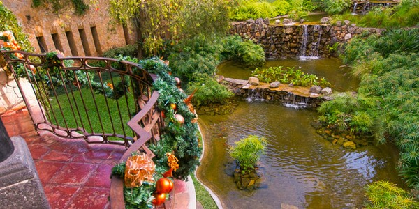 Guatemala - Guatemala City - Visa Real Hotel - Garden