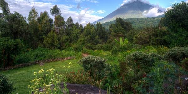 Gahinga_volcanoes view (2)