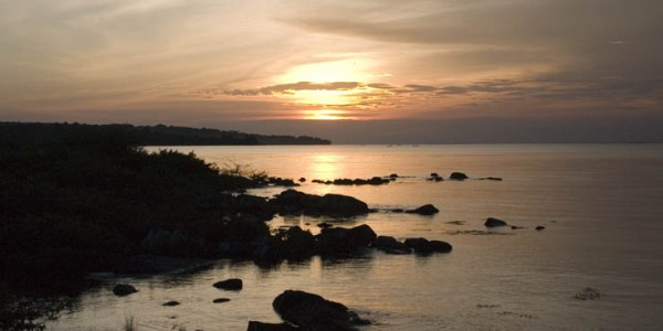 Lake Victoria from Ngamba Island - Wild Forntiers