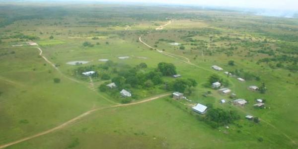 Guyana - Dadanawa - Dadanawa Ranch - Top