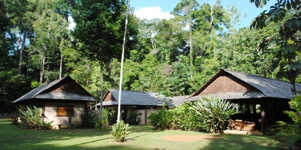 Guyana - Iwokrama Forest Reserve - Atta Rainforest Lodge - Lodge