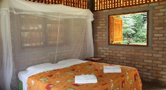 Guyana - Iwokrama Forest Reserve - Atta Rainforest Lodge - Room