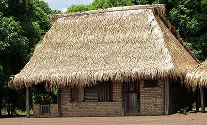 Guyana - Karanambu - Karanambu Ranch - Overview
