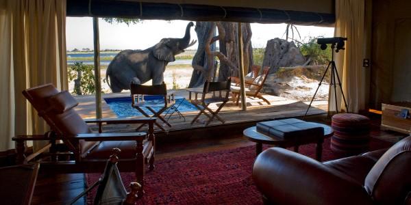 Botswana - Linyanti, Selinda & Kwando - Zarafa Camp - Inside
