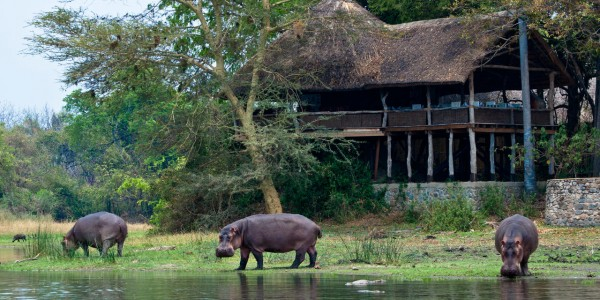 Malawi - Liwonde National Park - Mvuu Lodge - Overview