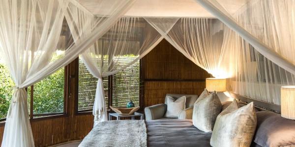 South Africa - Kwazulu Natal - Thonga Beach Lodge - Forest View