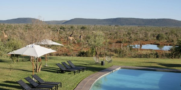South Africa - Madikwe Game Reserve - Madikwe Safari Lodge - Pool