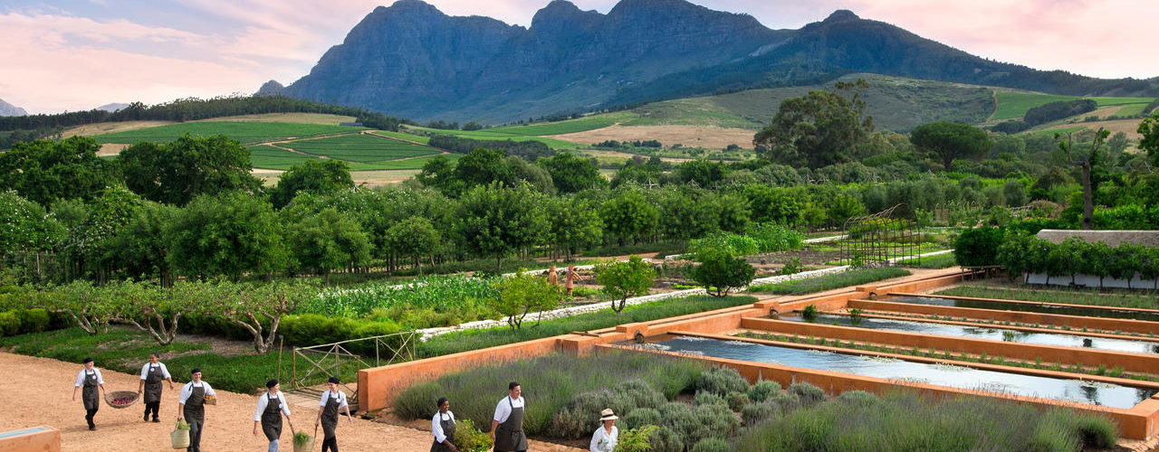 South Africa - Winelands - Babylonstoren - Garden