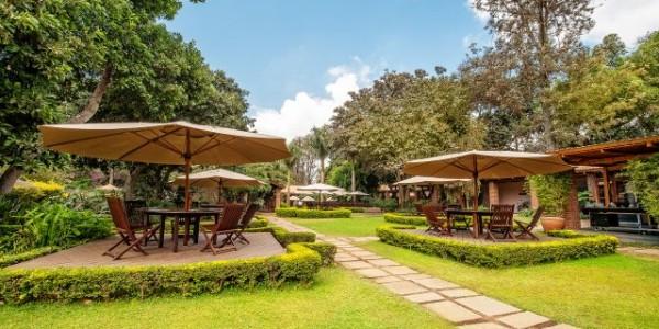 Tanzania - Arusha - Arusha Coffee Lodge - Gardens