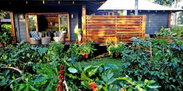 Tanzania - Arusha - Arusha Coffee Lodge - Suite Exterior