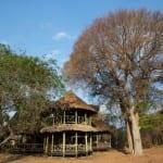 Katavi Wildlife Camp