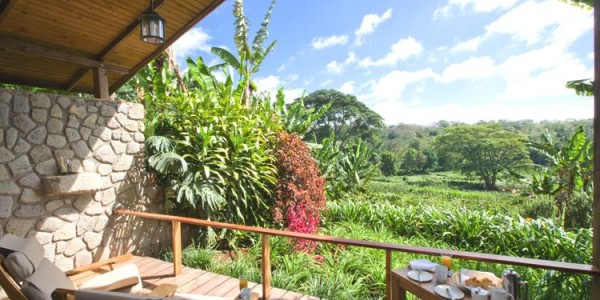 Tanzania - Ngorongoro Crater - Gibbs Farm - Gardens