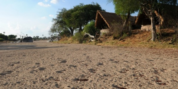 Tanzania - Ruaha National Park - Mwagusi Safari Camp - Dry River Bed