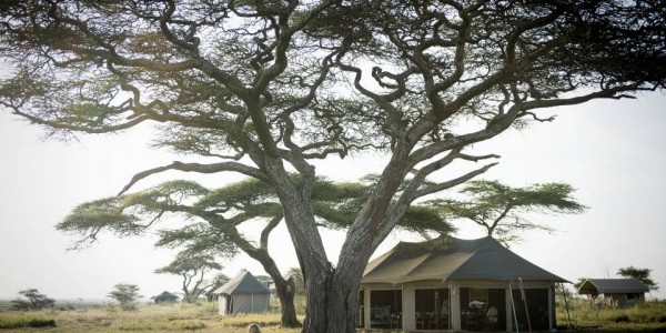 Tanzania - Serengeti National Park - Namiri Plains Camp - Outdoor