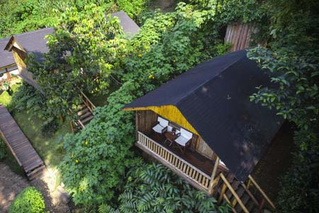 Uganda - Bwindi National Park - Buhoma Lodge - Overview