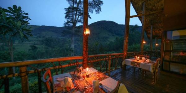 Uganda - Bwindi National Park - Mahogany Springs Lodge - Main Building Terrace