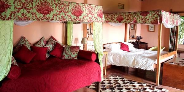 Uganda - Kibale Forest National Park - Ndali Lodge - Room