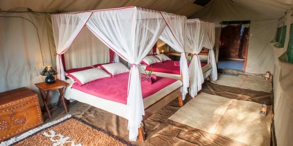Madagascar - South-East Madagascar - Madaclassic - Mandrare River Camp - Room