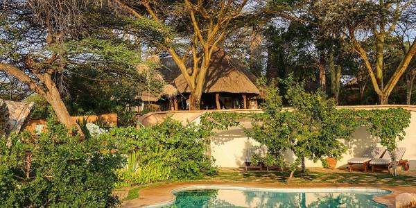Africa - Kenya - Laikipia - Lewa House - Pool