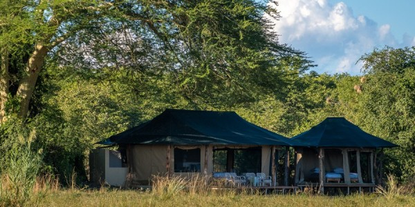 Malawi - Liwonde National Park - Kuthengo Camp - Tent