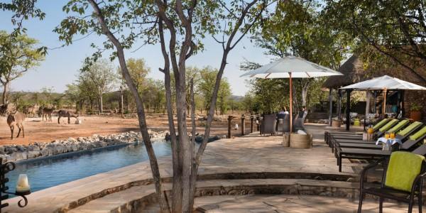 Namibia - Etosha National Park - Ongava Tented Camp - Pool