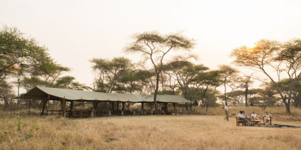 Tanzania - Serengeti National Park - Nomad Serengeti Safari Camp - Central Tent