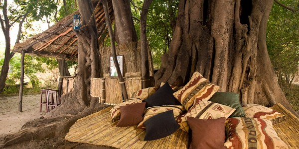 Zambia - South Luangwa National Park - Remote Africa Safaris - Lounge