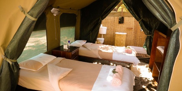 Zimbabwe - Gonarezhou National Park - Chilo Gorge Safari Lodge - Tent