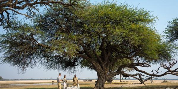 Zimbabwe - Hwange National Park - Linkwasha Camp - Bush Break