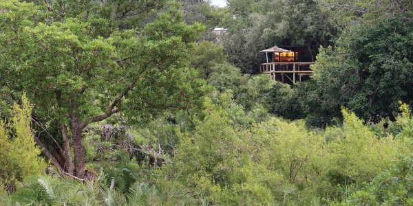 South Africa - Kruger National Park & Private Game Reserves - Londolozi Tree Camp - Exterior