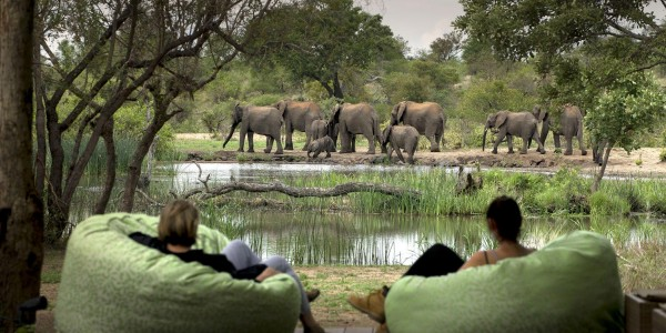 South Africa - Kruger National Park & Private Game Reserves - Tanda Tula Safari Camp - Pool Deck