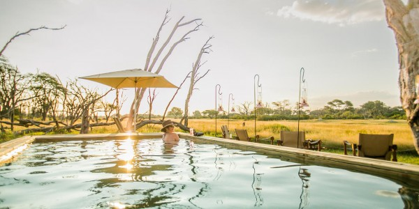 Zimbabwe - Hwange National Park - The Hide - Pool