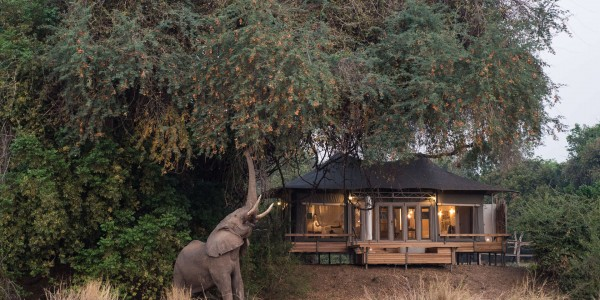 Zimbabwe - Mana Pools National Park - Chikwenya - Outside