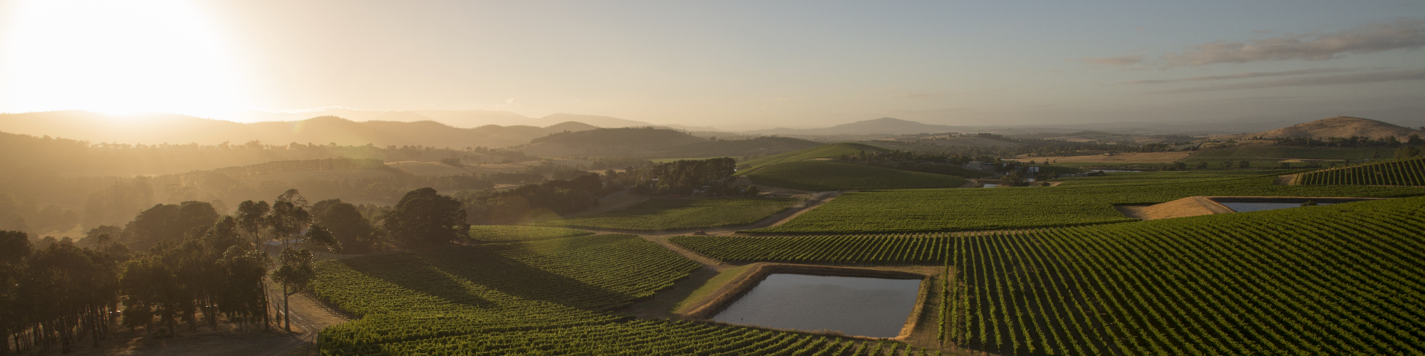 Yarra Valley - Credit: Tourism Australia