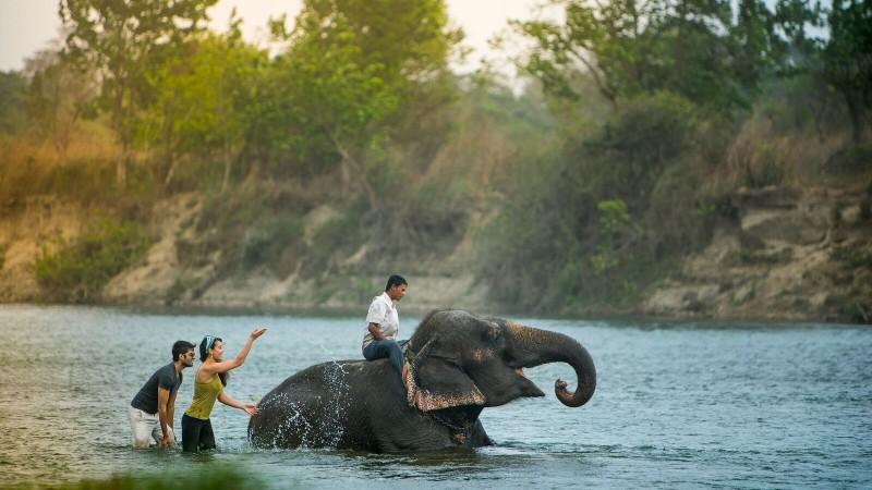 Elephant Bathing, Nepal